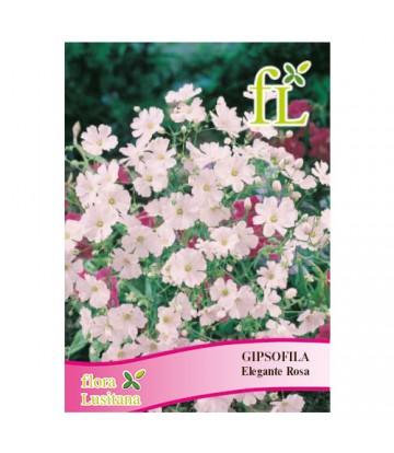 Sementes de Flor Gipsofila