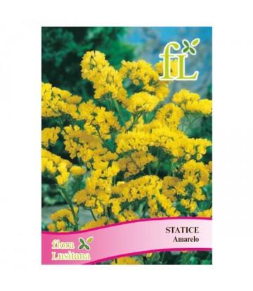 Sementes de Flor Statice