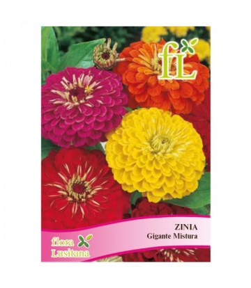 Sementes de Flor Zinia