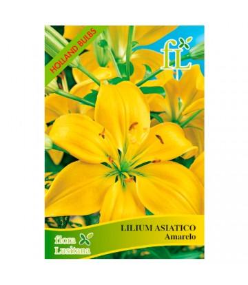 Semente de Flor Lilium