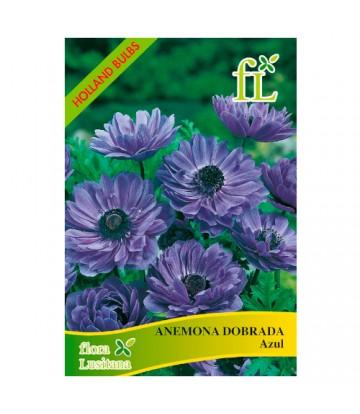 Sementes de Flor Anémonas