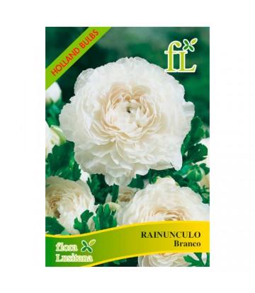 Sementes de Flor Paeonia