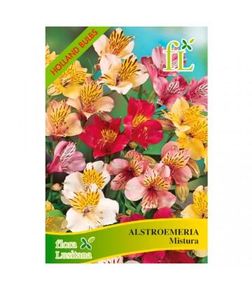 Sementes de Flor Alstroemeria