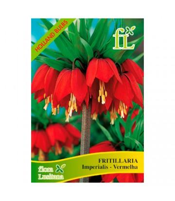 Sementes de Flor Fritillaria
