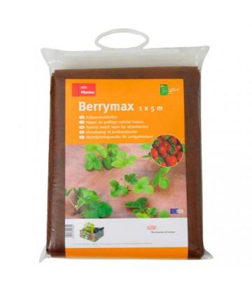 Tela Berrymax